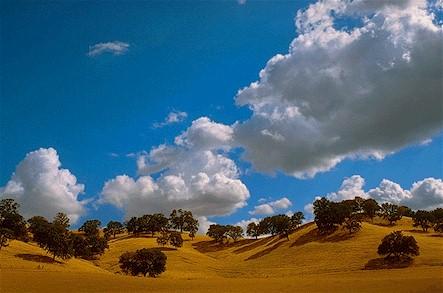 Gerhard Bock Golden Hills Central California